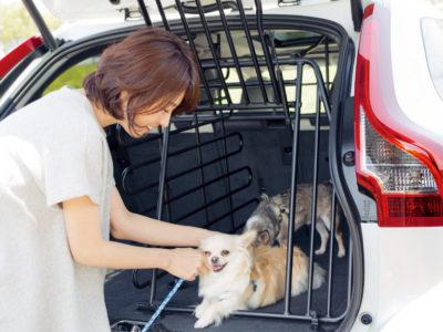 五明祐子さんのドライブファッション通信