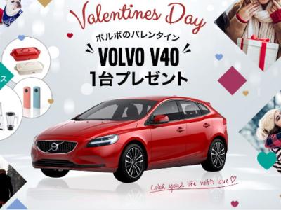 ボルボのバレンタイン♡*