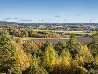 素晴らしいスウェーデンの秋